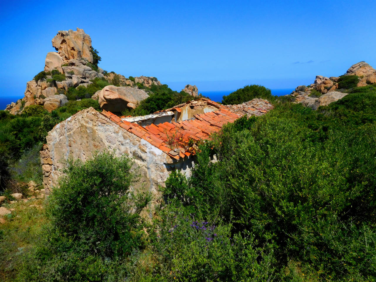 Sea view farmhouse for sale in Sardinia, a rare jewel in Trinità D'Agultu, 4ha land between granite and green bush.