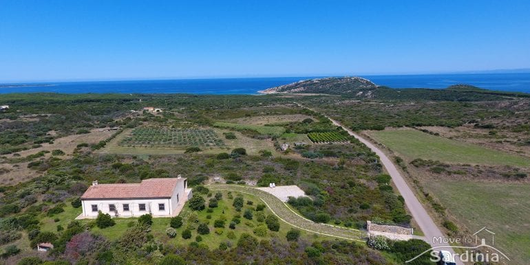Aglientu-house-for-sale-in-sardinia-AGL-MR-S1-38.jpg