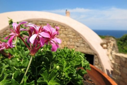 stunning villa for sale in Sardinia north side