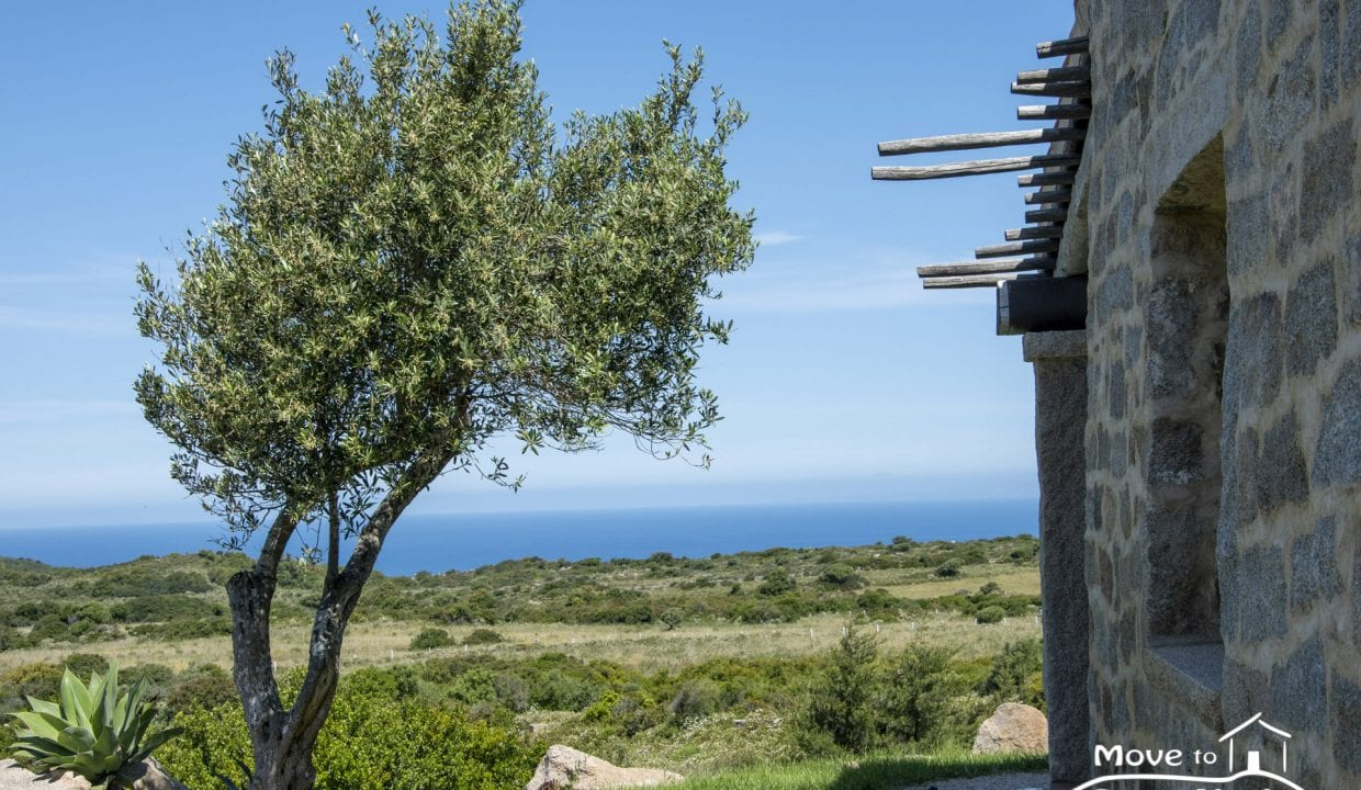 contry house for sale in Sardinia AGL-PI-48